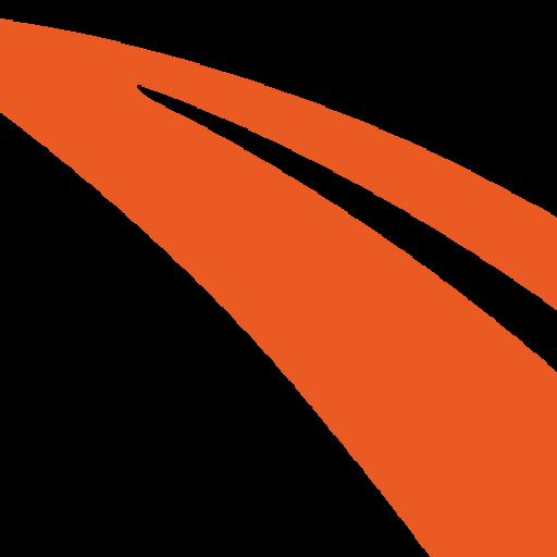 iwiss-favicon-icon